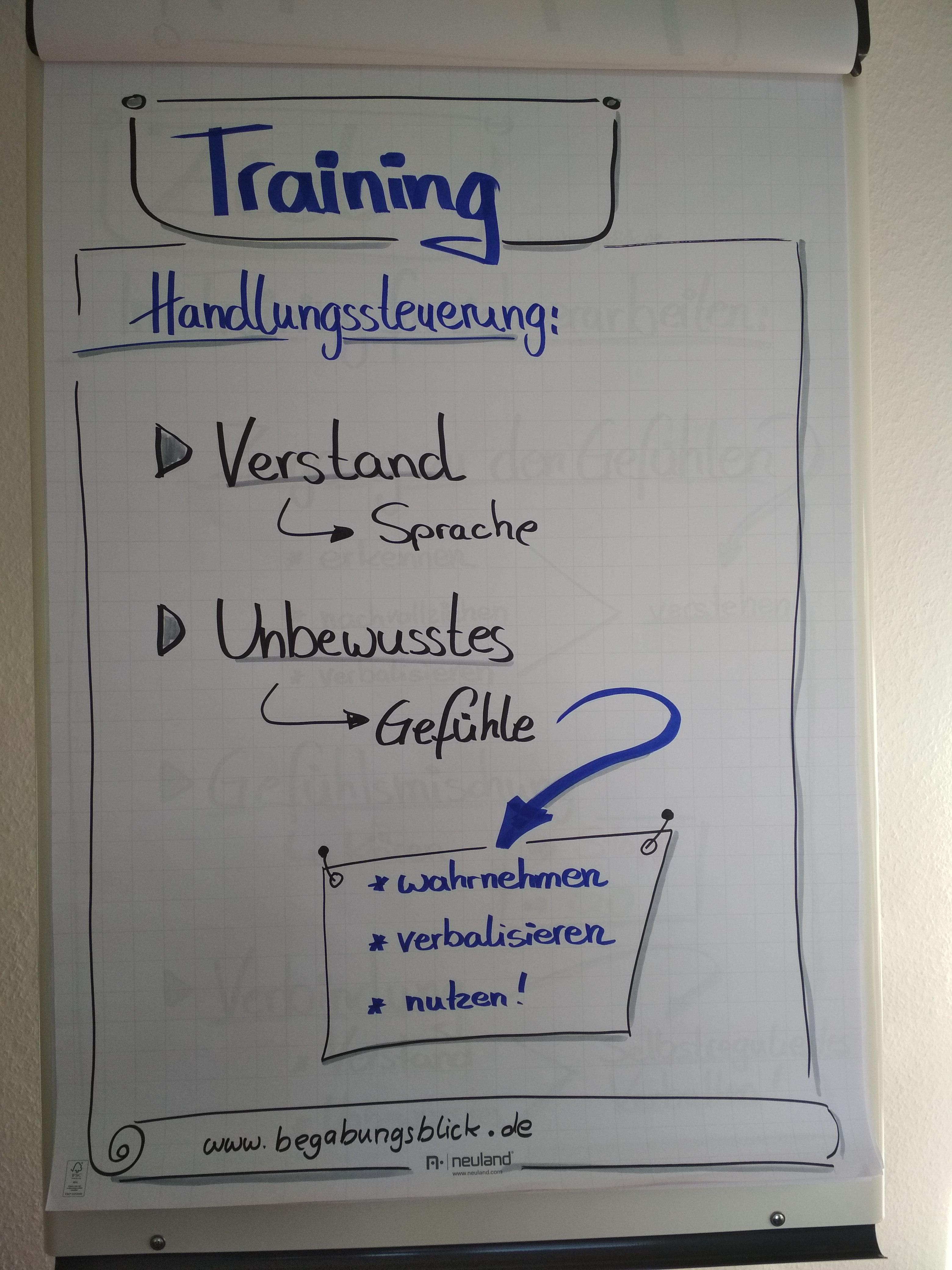 ZRM Trainingsplan