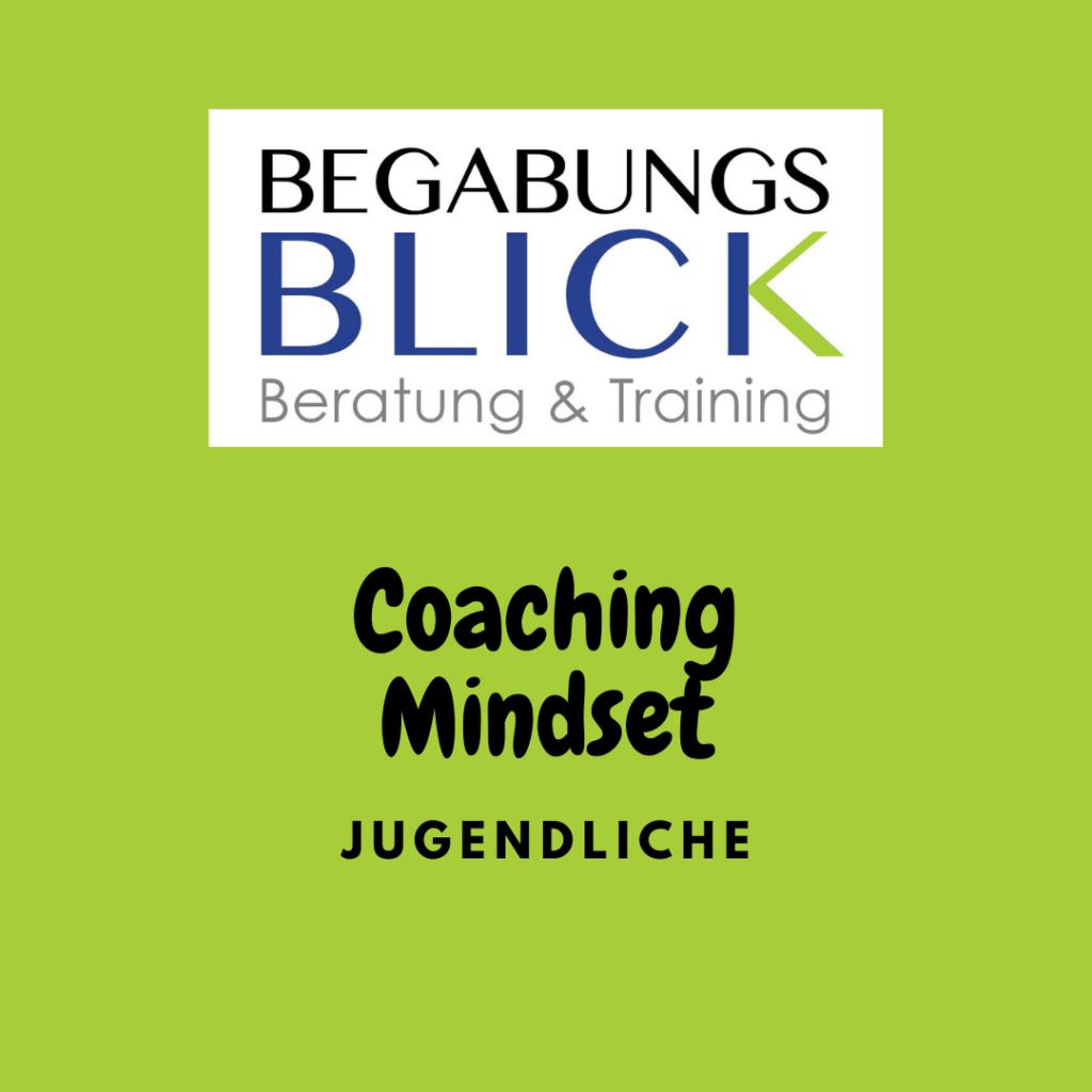 Jugendcoaching mit Mindset hochbegabte Jugendliche im Gespräch